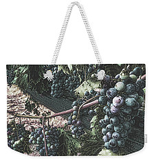 Weekender Tote Bag featuring the photograph Arrington Vineyards Splendor by Luther Fine Art