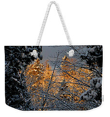 Weekender Tote Bag featuring the photograph Arrival by Elfriede Fulda