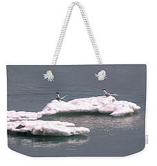 Arctic Terns On A Bergy Bit Weekender Tote Bag