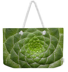 Artistic Nature Green Aeonium Cactus Macro Photo 203 Weekender Tote Bag