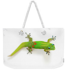 Weekender Tote Bag featuring the photograph Green Gecko by Denise Bird