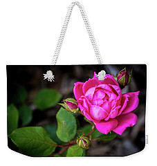 Knockout Rose Weekender Tote Bag