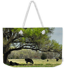 Weekender Tote Bag featuring the photograph Shady Rest by Bill Kesler