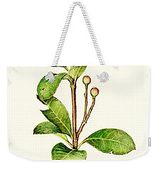 Weekender Tote Bag featuring the painting As The Twig Is Bent The Tree Inclines. by Heidi Kriel