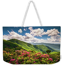 Asheville Nc Blue Ridge Parkway Spring Flowers Scenic Landscape Weekender Tote Bag