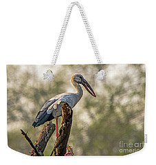 Asian Openbill Weekender Tote Bag