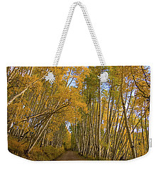 Weekender Tote Bag featuring the photograph Aspen Alley by Steve Stuller