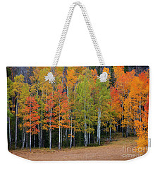 Aspen Color Weekender Tote Bag