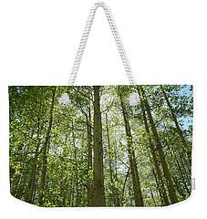 Aspen Green Weekender Tote Bag by Eric Glaser