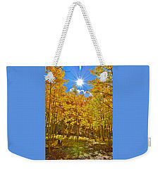 Weekender Tote Bag featuring the photograph Aspen Grove Aglow by Diane Alexander