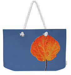 Weekender Tote Bag featuring the photograph Aspen Leaf 1 by Marie Leslie