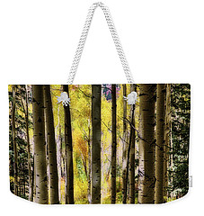 Weekender Tote Bag featuring the photograph Aspen Mood - Autumn - Colorful Colorado by Jason Politte