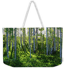 Weekender Tote Bag featuring the photograph Aspen Morning 1 by Marie Leslie