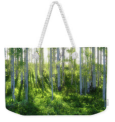 Weekender Tote Bag featuring the photograph Aspen Morning 3 by Marie Leslie