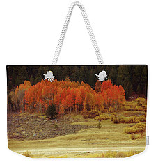 Aspen, October, Hope Valley Weekender Tote Bag by Michael Courtney
