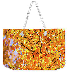 Aspen Of Many Colors Weekender Tote Bag