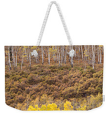 Weekender Tote Bag featuring the photograph Aspen Patterns by Patricia Davidson