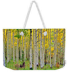 Aspen Slope Weekender Tote Bag