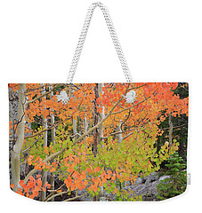 Weekender Tote Bag featuring the photograph Aspen Stoplight by David Chandler