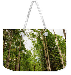Weekender Tote Bag featuring the photograph Aspens Galore by Rick Furmanek