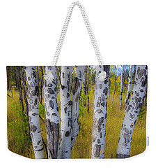 Weekender Tote Bag featuring the photograph Aspens by Gary Lengyel