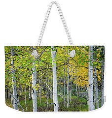 Aspens In Autumn 6 - Santa Fe National Forest New Mexico Weekender Tote Bag by Brian Harig