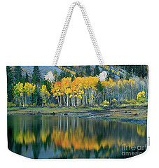 Aspens In Fall Color Along Lundy Lake Eastern Sierras California Weekender Tote Bag by Dave Welling