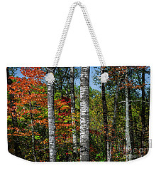 Weekender Tote Bag featuring the photograph Aspens In Fall Forest by Elena Elisseeva