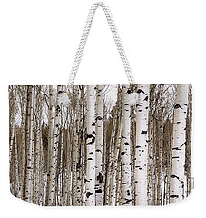 Aspens In Winter Panorama - Colorado Weekender Tote Bag