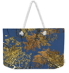 Weekender Tote Bag featuring the photograph Aspens Looking Up by Mary Hone