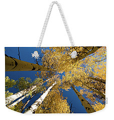 Weekender Tote Bag featuring the photograph Aspens Up by Steve Stuller