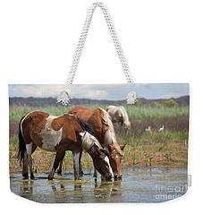 Assateague Ponies Tale Drink Weekender Tote Bag
