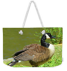 Weekender Tote Bag featuring the photograph At A Standstill by Kathy Kelly