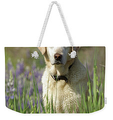 Weekender Tote Bag featuring the photograph At Attention by Jim and Emily Bush