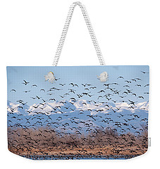 At Barr Lake Weekender Tote Bag