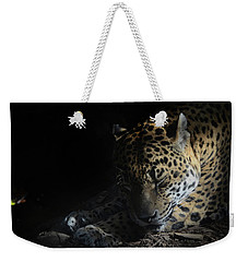 Weekender Tote Bag featuring the photograph At Ease by Maggy Marsh