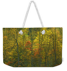 At The Edge Of The Forest Weekender Tote Bag by Ulrich Burkhalter
