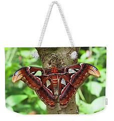 Atlas Moth In A Tree Weekender Tote Bag