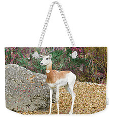 Weekender Tote Bag featuring the painting Attentive by Judy Kay