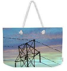 Weekender Tote Bag featuring the photograph Auditioning For A Hitchcock Movie by Benanne Stiens