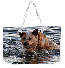 Out For A Swim Weekender Tote Bag