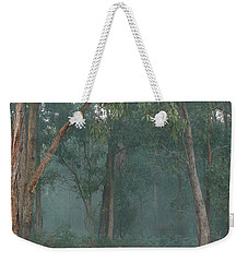 Weekender Tote Bag featuring the photograph Australian Morning by Evelyn Tambour