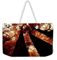 Autumn Canopy Abstract Weekender Tote Bag