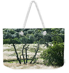 Autumn And Grass In Isle Of Skye, Uk Weekender Tote Bag