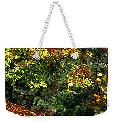Weekender Tote Bag featuring the photograph Autumn Backyard by Joan  Minchak