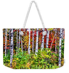 Weekender Tote Bag featuring the painting Autumn Birches by Christopher Arndt