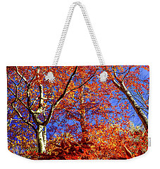 Weekender Tote Bag featuring the photograph Autumn Blaze by Karen Wiles