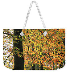 Autumn Colored Trees In Forest Weekender Tote Bag
