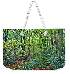 Weekender Tote Bag featuring the photograph Autumn Colours by Anne Kotan