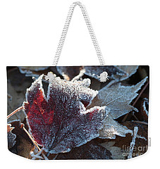 Weekender Tote Bag featuring the photograph Autumn Ends, Winter Begins 2 by Linda Lees